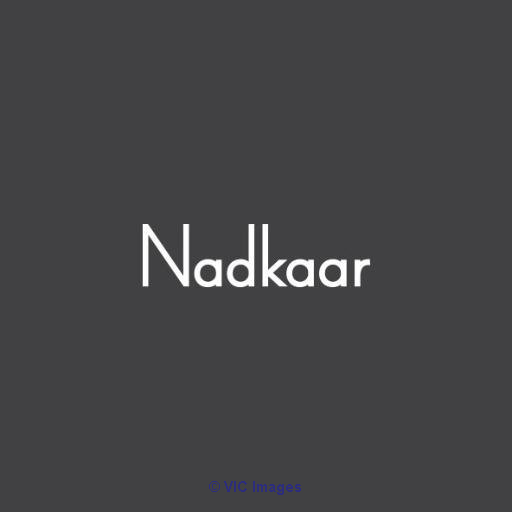 Nadkaar Agency - Digital Services - Worldwide moscow